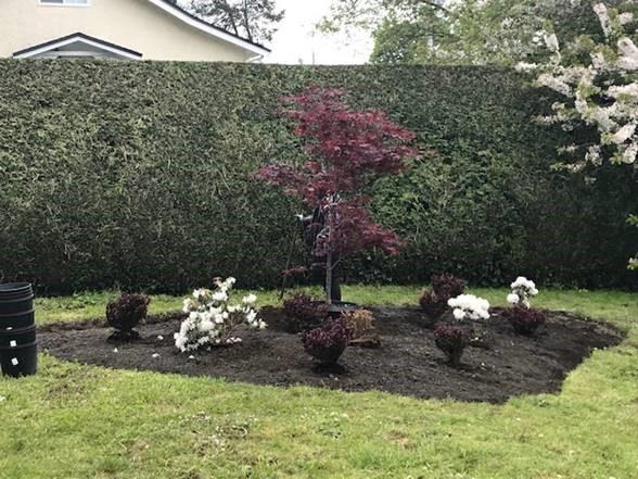 Neighbourhood Garden project